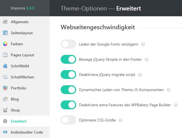 Impreza WordPress Icons werden nicht angezeigt CSS-Option