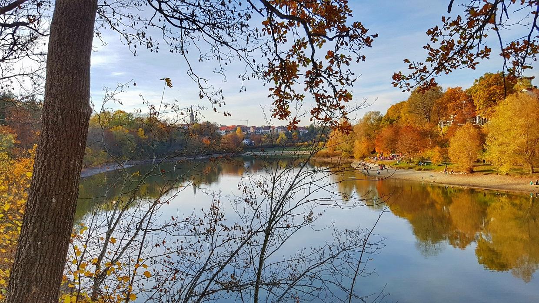 Stausee Schlichemtalsperre Schömberg im Herbst