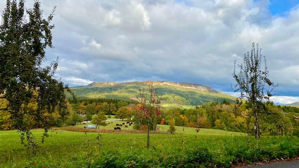 Ausblick auf den Plettenberg vom alten Albaufstieg