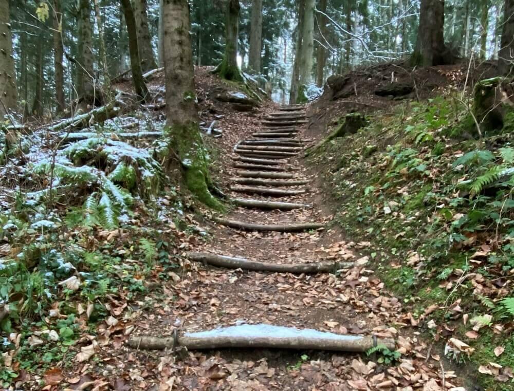 Treppe bei der Plettenberg-Wanderung