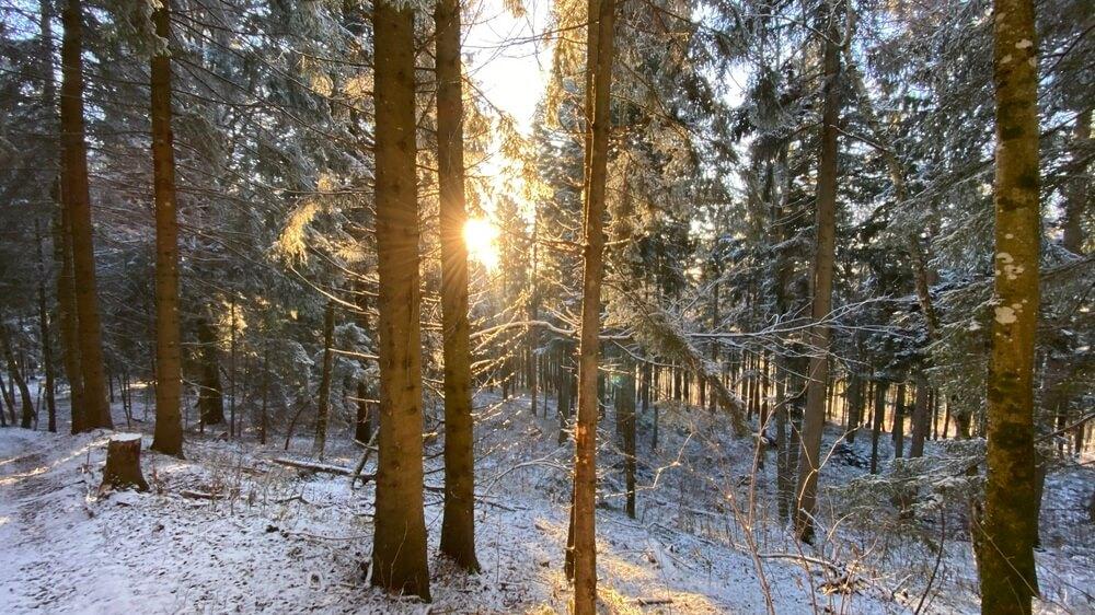 Sonnenuntergang & Schnee auf dem Plettenberg